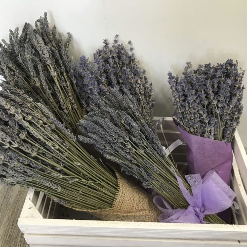 dried-lavender-bunch