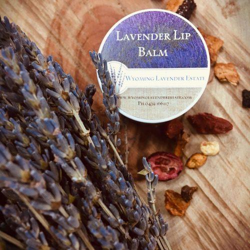 Jellycat Colin Chameleon - image lavender-lip-balm-500x500 on https://bellafloralboutique.com.au