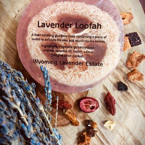 Jellycat Colin Chameleon - image lavender-loofah-500x500 on https://bellafloralboutique.com.au