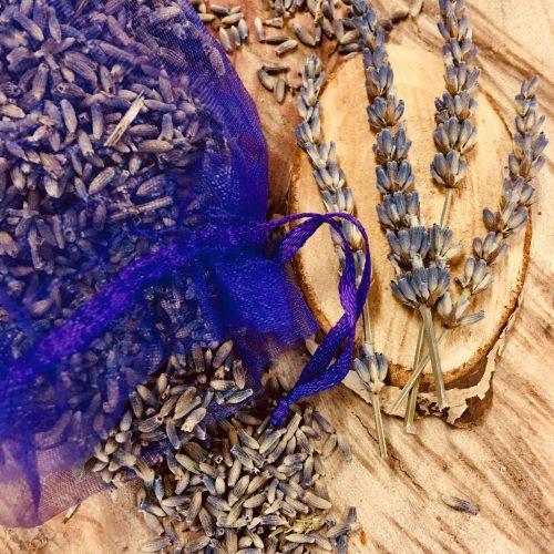 Jellycat Colin Chameleon - image lavender-sachet-500x500 on https://bellafloralboutique.com.au